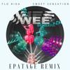 Flo Rida- Sweet Sensation(Epatage Remix)