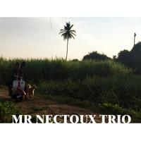 Mr Nectoux Trio - Liberté - Live À La Déviation