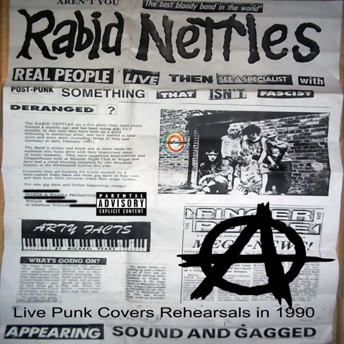 Rabid Nettles - Punk Covers 1990
