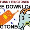 Goat Bleat Ringtone Free Download Funny Ringtone Goat