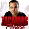 Zacarias Ferreira Mix-El Intruso, Asesina, Dime Que Falto, No Me Entiendo, etc. Portada del disco