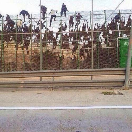 "Ma Valise - Ceuta (""Pass the Walls Obrint RMX"")"