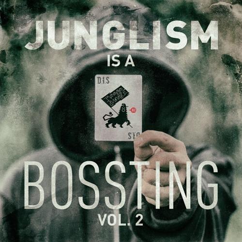 D.I.S - Junglism is a Bossting #2