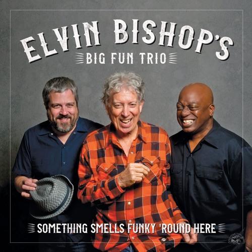 Elvin Bishop's Big Fun Trio - Something Smells Funky 'Round Here