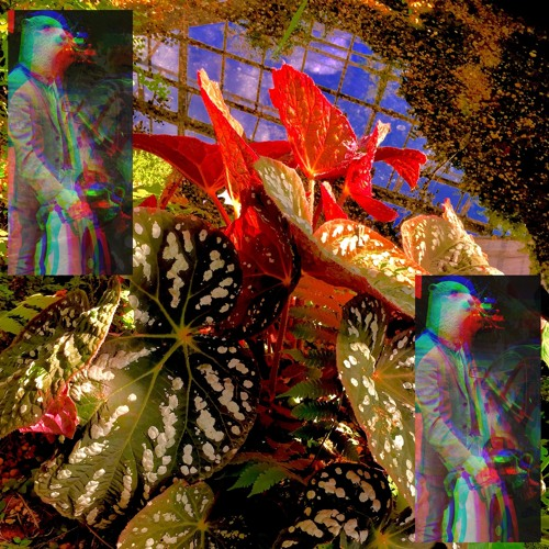 Botanical Shenanigans