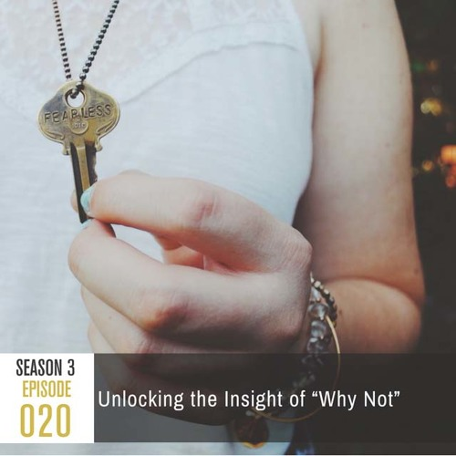 """Season 3, Episode 20: Unlocking the Insight of """"Why Not"""""""