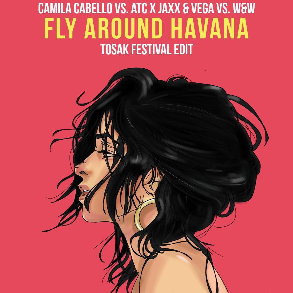 Download Camila Cabello Vs Atc X Jaxx Vega Vs W W Fly Around Havana Tosak Edit By Tosak Mp3 Soundcloud To Mp3 Converter
