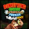Donkey Kong Country Tropical Freeze - Busted Bayou (PUNYASO Remix)