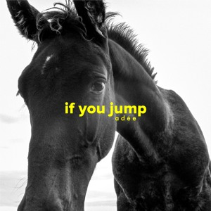 If You Jump
