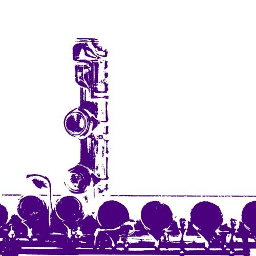 Konzertprojekt Presents: Fluteprojekt (May 11 2018)