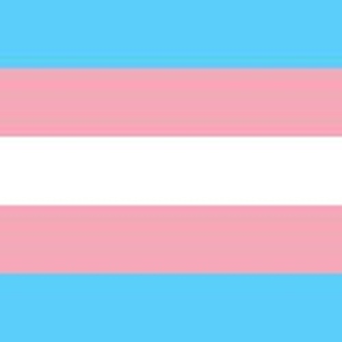 Promoting transgender equality: are social workers up to the challenge?