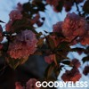 Goodbyeless