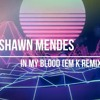 Download Shawn Mendes   - In My Blood (EM k cover remix) Mp3