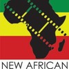 AfricaNow! Mar. 7, 2018 Pol. Situation in DRC & African Films Take Center Stage in the DMV