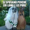Pavarotti & Zucchero - MISERERE - mia
