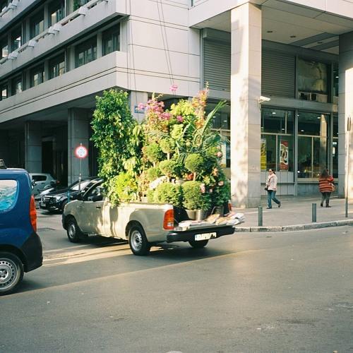 As you plant, you also bury 02 - Joralsky