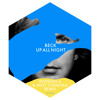 Beck - Up All Night (Division 4 & Matt Consola Remix Radio)