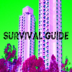 SURVIVAL GUIDE #1: Leave Your Fragility At The Shore