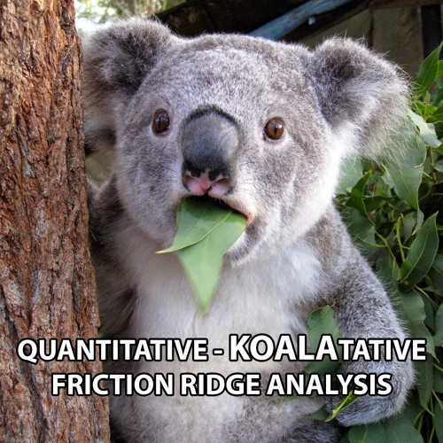 Categorical vs. Probabilistic