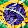 O BRASIL QUE EU QUERO - MC'S SACI E GW - DJ PH DA SERRA E DJ LV DO MDP -