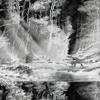 Faheem Newman - Boys In The Wood (Love Songs)