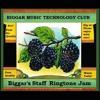Biggar's Staff Ringtone Jam !!!