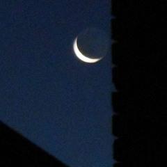 Blue moon (Original song)