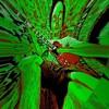 Cali Experiment (no Lyrics) - May 19 Live Mix