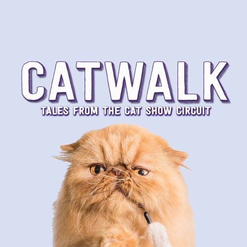 SIFF 2018 - Catwalk: Tales from the Cat Show Circuit (dir. Michael McNamara and Aaron Hancox)