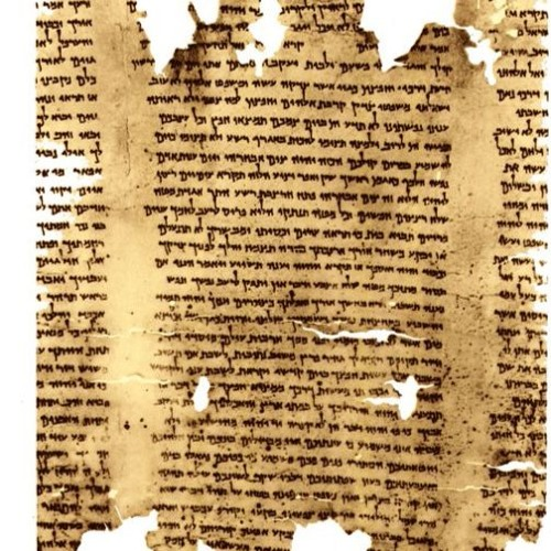 Episode 15 - Bible Basics