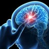 SG 11 Brain: Boost Memory Levels And Focus Naturally| Buy Free Trial!