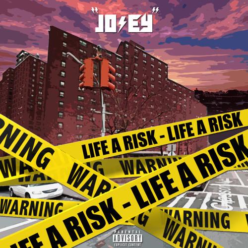 Lifes A Risk - Short Story Mondays