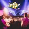DIA- Plattenpussys Live @ Sputnik Springbreak 2018