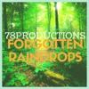Forgotten Raindrops [deepforest] Mp3