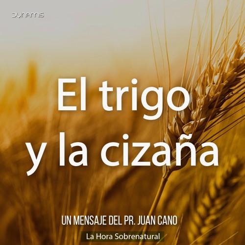 El trigo y la cizaña - Pr. Juan Cano