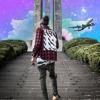 Airplane Mode ☥ (Prod. by Trip Skylark)