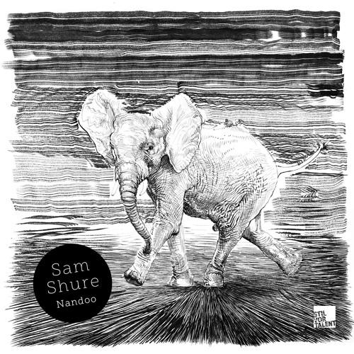 SVT221 - Sam Shure - Nandoo