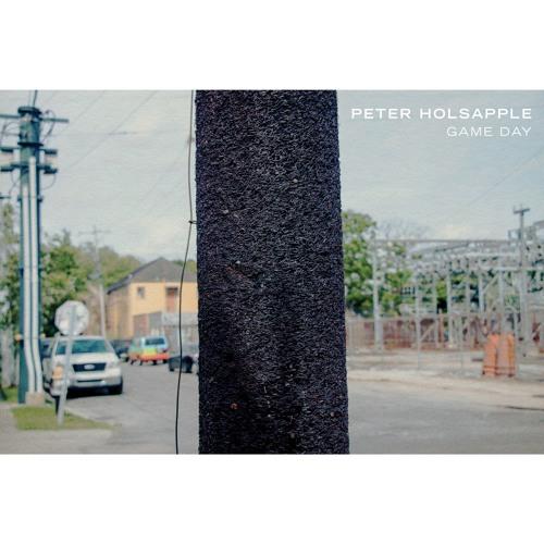 Peter Holsapple - Commonplace