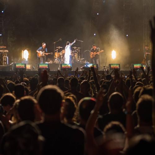 Groove Infection: Preview auf die europäischen Reggae Festivals