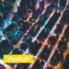 digidash (prod. Thomasmoney7) SKRT