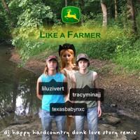 tracy - like a farmer (dj happy hardcountry's donk love story remix)