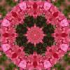 Tibetan Singing Bowls - Third Eye Chakra 936hz