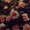 vipn - unspoken words (Deep Melancholic Piano Rap Beat Instrumental) [FREE BEAT]
