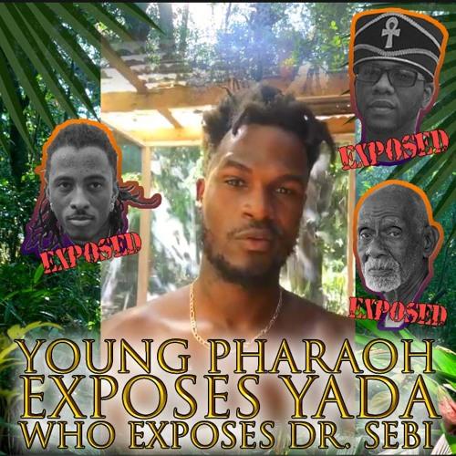 Young Pharaoh Exposes Yada, Who Exposes Dr  Sebi, Checkmate
