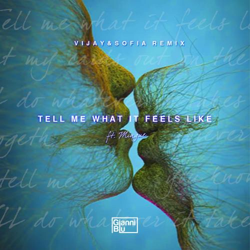 tell me what it feels like remix