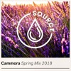 SOURCE - Source Recordings Mixes Spring Mix (Mixed By Cammora) 2018-05-23 Artwork