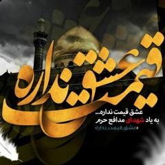 شور: دلم میگه حرم میره حرم/ سید رضا نریمانی