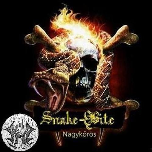 Snake Bite: Mocskos Rockandroll