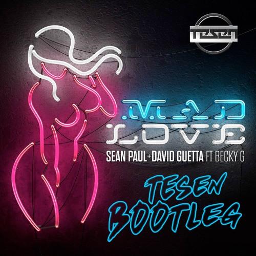 Sean Paul & David Guetta - Mad Love (Tesen Bootleg) (3K Free Download)