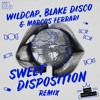 The Temper Trap - Sweet Disposition (WildCap, Blake Disco & Marcos Ferrari Remix)